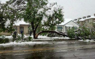 Denver's Spring Snow Storms