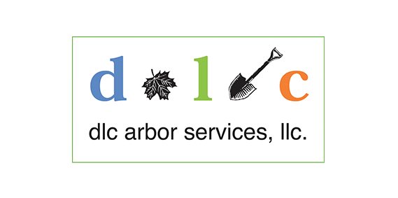 DLC Arbor Services